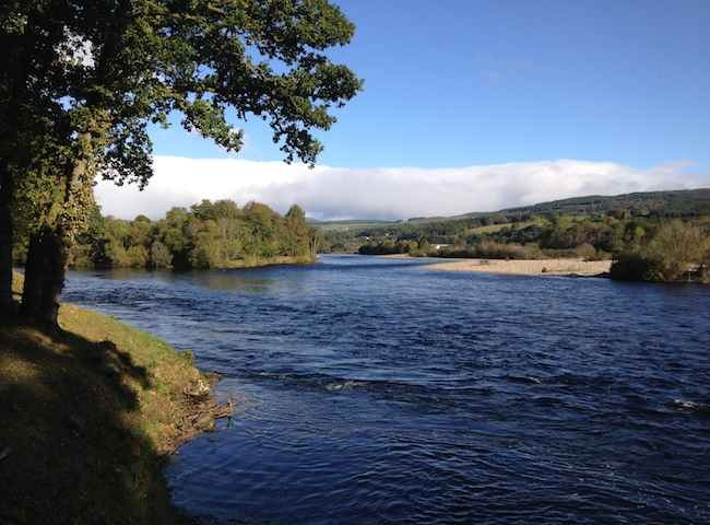Catching Salmon On The Rivers Of Scotland